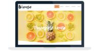Pineapple House Website Design